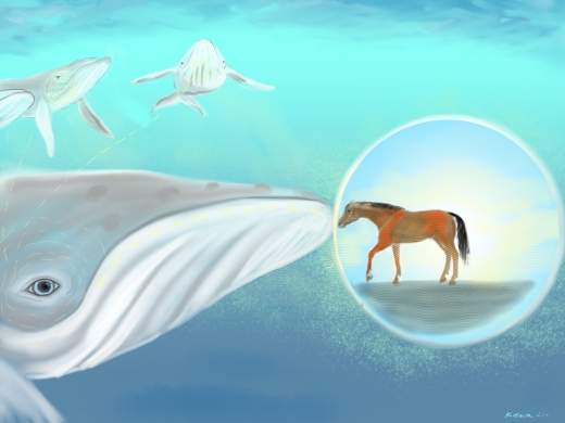 Whale Healer